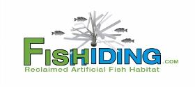 Fishiding